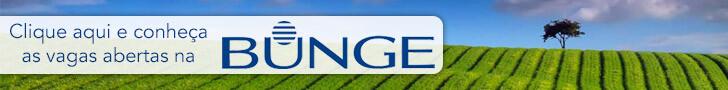 banner-bunge