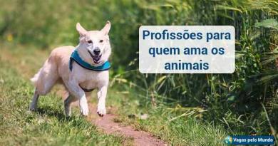 Se voce ama os animais, precisa conhecer algumas profissoes
