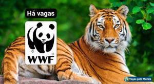 WWF esta contratando em varios paises do mundo