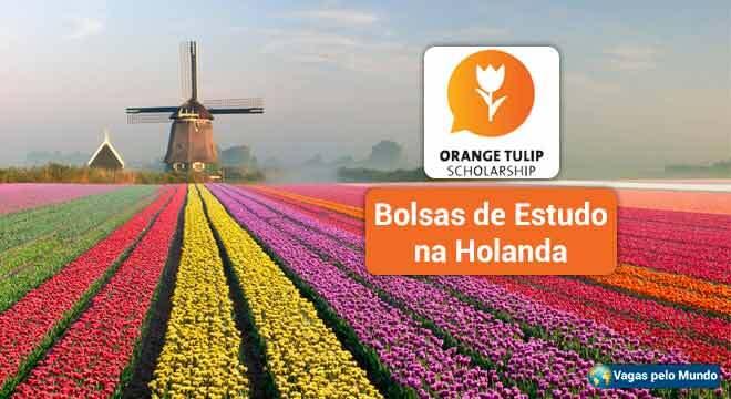 Bolsas de estudo na Holanda