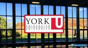 Universidade canadense esta com oferta de bolsas de estudo
