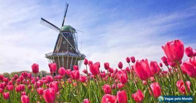 Holanda tem ofertas de emprego para quem fala portugues
