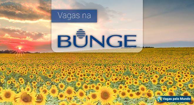 Vagas na Bunge