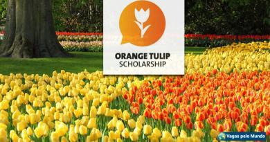 Bolsas de estudo na Holanda com aulas em inglês