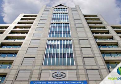 Universidade da ONU oferece bolsas de estudo de € 1.650,00 por mês