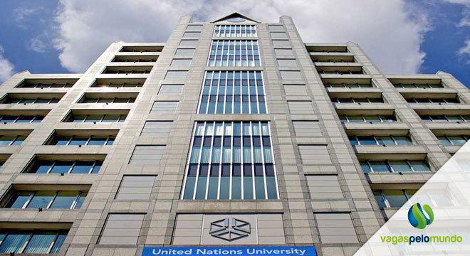 Bolsas de estudo na ONU